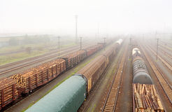 Cargo train platform with container, railway Stock Photography