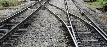 Cargo train platform in Thailand Royalty Free Stock Photography