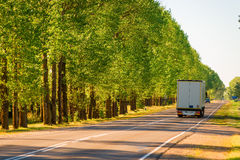 Cargo truck driving on suburban highways. In summer royalty free stock image