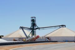Cargo trailers are unloading harvested grain at the silo Stock Images