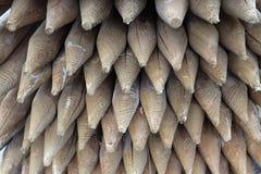Cargos de madeira aguçado da cerca Foto de Stock