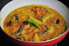 Cari bengali de poissons avec la pomme de terre et le safran des indes Images stock