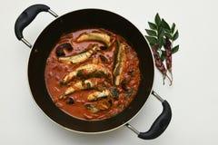 Cari chaud épicé de poissons d'Inde du Kerala Image stock