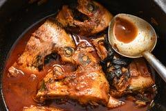 Cari chaud épicé de poissons d'Inde du Kerala Photos libres de droits
