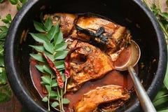 Cari chaud épicé de poissons d'Inde du Kerala Photographie stock libre de droits