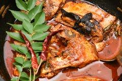 Cari chaud épicé de poissons d'Inde du Kerala Photos stock