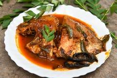 Cari chaud épicé de poissons d'Inde du Kerala Image libre de droits