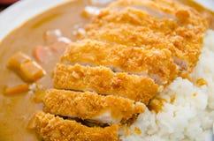 Cari de poulet avec du riz Photo libre de droits