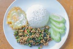 Cari de viande avec du riz, orientation sélectrice photographie stock libre de droits