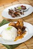 Cari et porc de poulet satay image stock