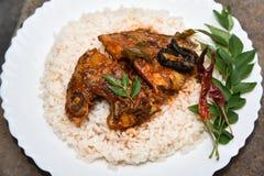 Cari et riz chauds épicés de poissons d'Inde du Kerala Photo libre de droits