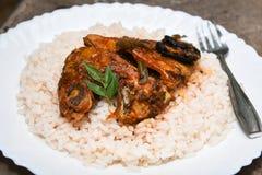 Cari et riz chauds épicés de poissons d'Inde du Kerala Photo stock