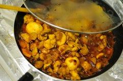 Cari indien chaud et épicé de poulet photographie stock libre de droits