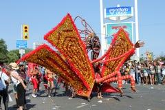 Caribana Parade Stock Photos