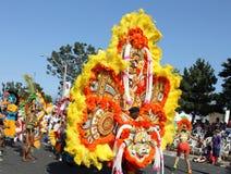 Caribana Parade Royalty Free Stock Image