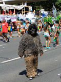 Caribana Parade Stock Images