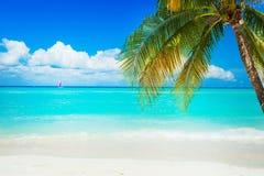 пристаньте caribbean к берегу Стоковые Фото