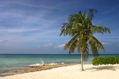 Caribbean Beach Royalty Free Stock Photo