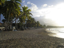 Caribbean beach. In the afternoon Stock Image