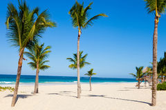 Caribbean beach Royalty Free Stock Image