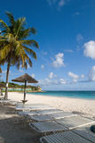 Caribbean beach. White sands, blue skies and palm trees Stock Images