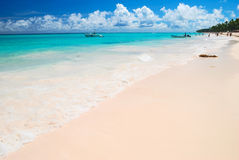 Caribbean beach Stock Photography