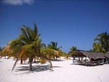 Caribbean beach bar. Beach bar in the Caribbean Stock Photography