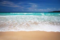 Caribbean beach. Beautiful, Empty Caribbean Beach. Macao beach Royalty Free Stock Photo
