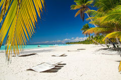 Caribbean beach. With chaise longues Royalty Free Stock Photos
