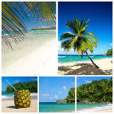 Caribbean beach collage Royalty Free Stock Images