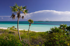 Caribbean beach in Cuba. Cayo Guillermo, with palms stock photography
