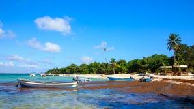 Caribbean beach in Dominican Republic Royalty Free Stock Photo
