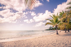 Caribbean beach in Dominican Republic Royalty Free Stock Photography
