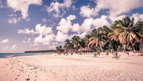 Caribbean beach in Dominican Republic Stock Photography