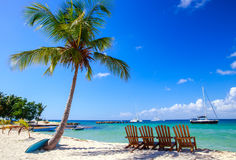 Caribbean beach in Dominican Republic. Beautiful caribbean beach on Saona island, Dominican Republic Royalty Free Stock Image