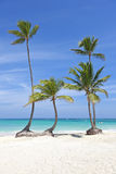 Caribbean beach Dominican Republic Royalty Free Stock Photography