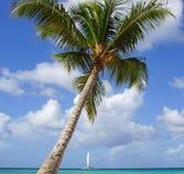 Caribbean Beach, Dominican Republic Stock Photography