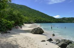 Caribbean beach Royalty Free Stock Photography