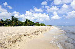 Caribbean beach landscape Royalty Free Stock Photography