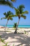 Caribbean Beach, Mexico Royalty Free Stock Image