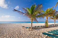 Caribbean beach in Mexico Stock Images