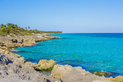 Caribbean beach in Mexico Royalty Free Stock Photography