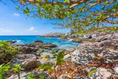 Caribbean beach in Mexico Stock Photos