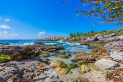 Caribbean beach in Mexico Royalty Free Stock Image