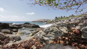 Caribbean beach in Mexico stock video footage