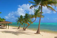 Caribbean Beach and ocean. Beach and ocean in Little Cayman in the Caribbean Stock Image
