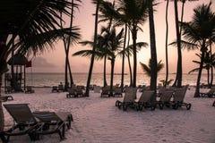 Caribbean Beach. With palm trees amd sunbeds Stock Photos