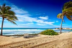 Caribbean beach,palms and tropical sea in Haiti stock images