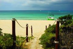 Caribbean Beach Path. A path leading to a caribbean beach on Cozumel, Mexico Stock Photography