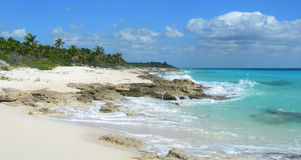 Caribbean beach at the Riviera Maya, Cancun, Mexico. Caribbean beach with tropical vegetation, limestone rocks, palm trees and green foliage at a resort in stock photos